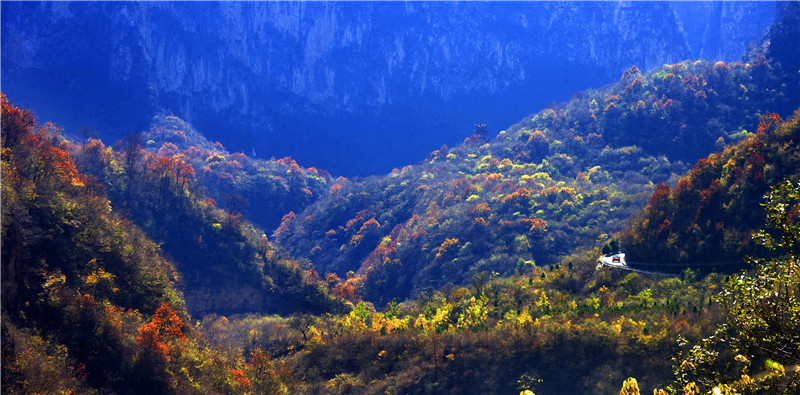 丁小山—湖北武汉—峡谷之秋.jpg